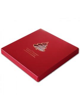 Kartka Świąteczna w Formie Pudełka z Wyciętą Choinką FS393bg